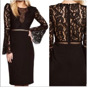 Bardot lace faedre black dress